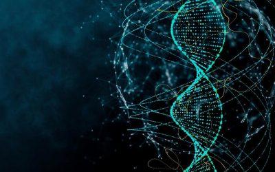 De grenzen aan DNA-onderzoek